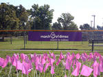 March of Dimes/March for Babies